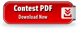 Download Super Prize Wheel PDF