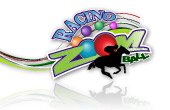 Racino Zoom Ball