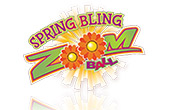 Spring Bling Zoom Ball