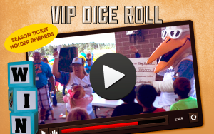 VIP Dice Roll